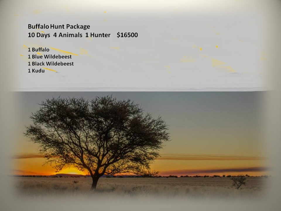 Buffalo Hunt Package (2)