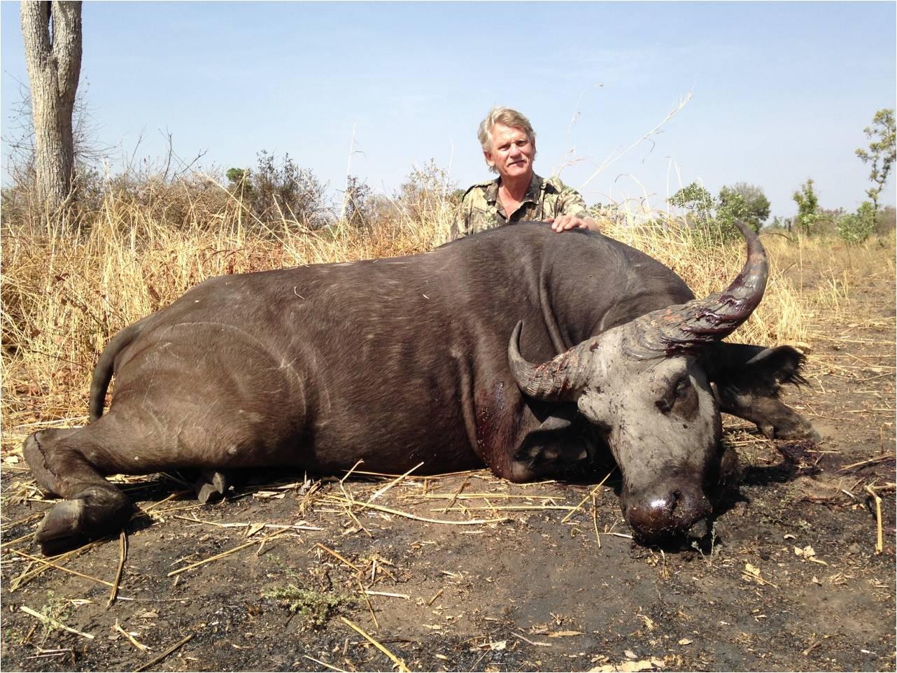 Burkina Faso Buffalo 3