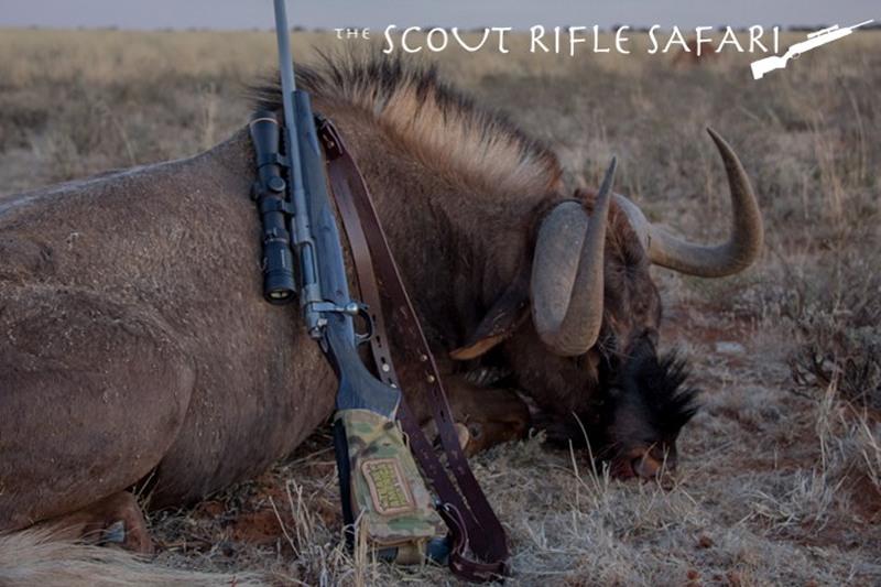m_Ruger Gunsite Scout Rifle BWB