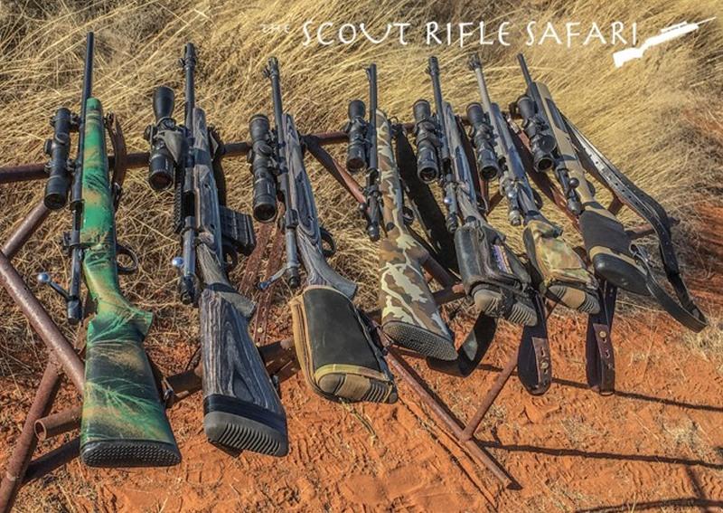 m_Scout Rifles